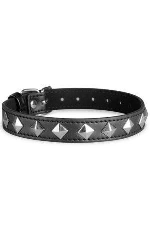 Whipped Cowan Collar - Bondage Halsband 1